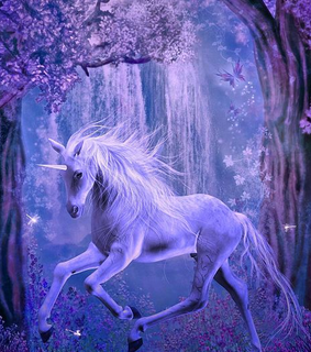 forest, nature and unicorns