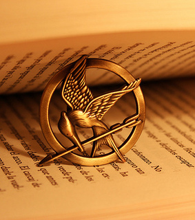 mocking jay, book and the hunger games