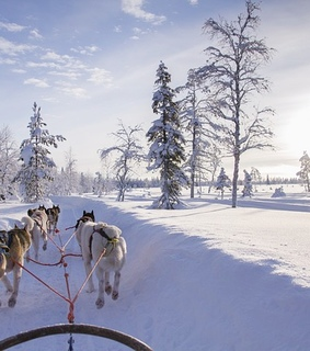 winter, europe and snow