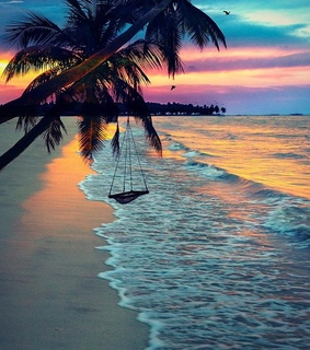 sunset, beautiful and ocean