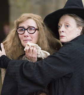 the half blood prince, minerva mcgonagall and friends