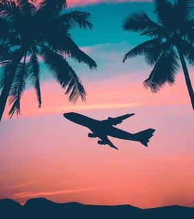sunset, travelling and plane