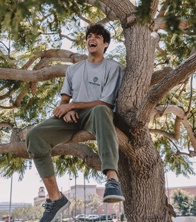 noah centineo, hot and tatbilb