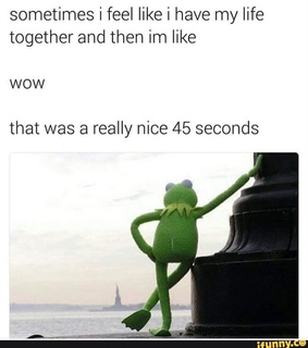 life, ifunny and kermit the frog