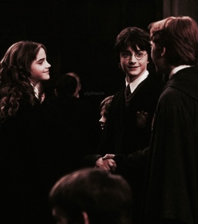 golden trio, ron weasley and harry potter