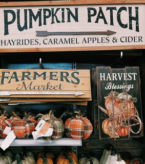 fall, outdoor decorations and halloween decor