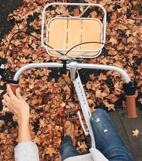 cycling, bike and leaves
