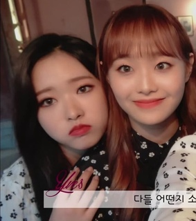 low quality, loona and lq