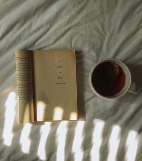 dream, cofe and book