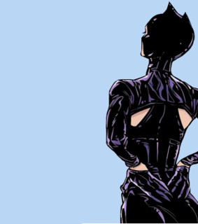 catwoman, selina kyle and dc comics