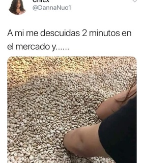 frijoles, memes and lol
