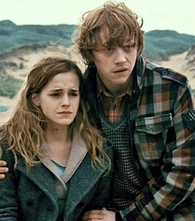 dobby, hermione and hermione granger