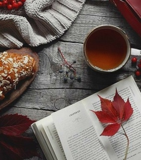 happy, books and leafs