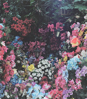 floral garden, vintage flowers and field