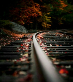 train, quiet and fall