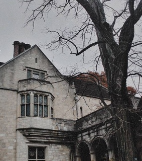 house, architecture and gray