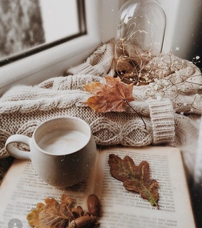 cozy, fall and coziness