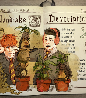 harry, weasley and ron