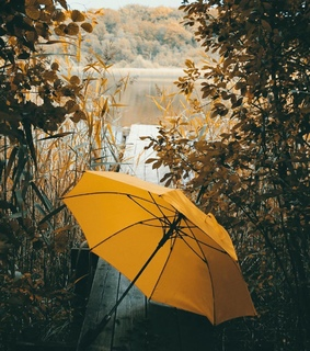 photography, autumn and fall