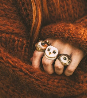 cozy, owls and sweater