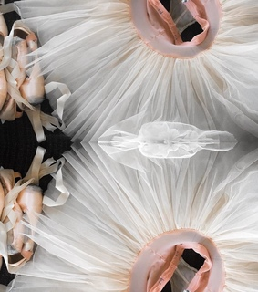 ballerina, fashion detail and tutu