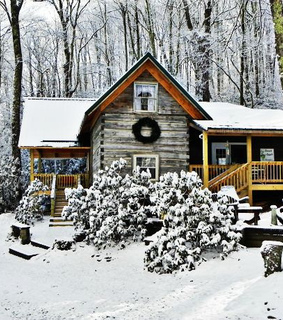 country living, forest and winter