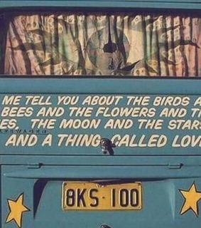 love, quote and sunflower
