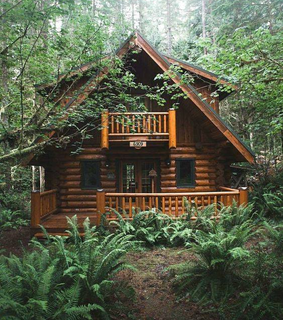 home, forest and house
