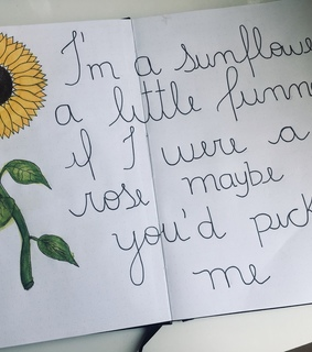 soundtrack, sunflower and song