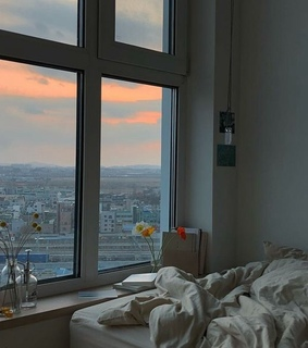 bedroom and window view
