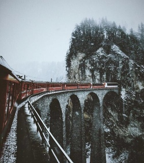 trees, trains and aesthetic
