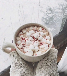 christmas, winter and hot chocolate