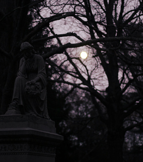 cemetary, graveyard and aesthetic