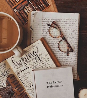 journal, diary and brown