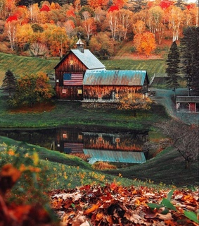 mountain, cabin and forest