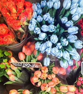 flowers, colorido and love