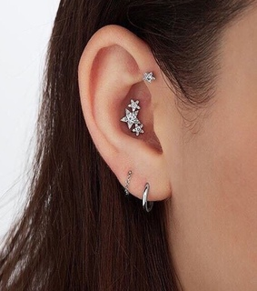 conch, studs and accessories