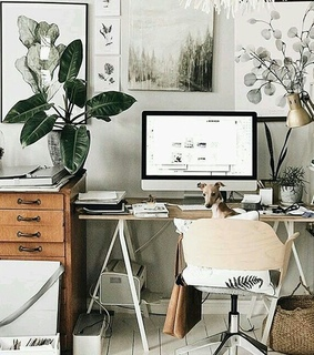 home decor, pets and houses