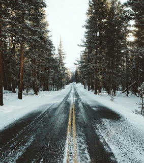 winter wonderland, snow and road