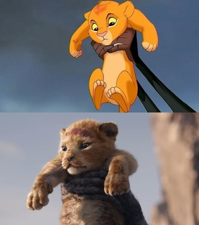 cinematography, art and the lion king