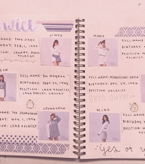 once, bujo and twice