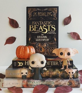 fantastic beasts, dobby and voldemort
