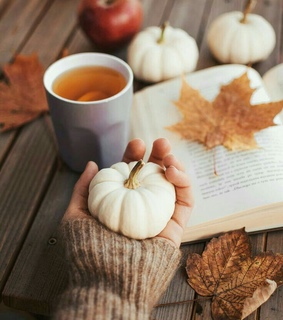 autumn fall, relax and tea