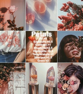 filters, vsco feed and vsco effects