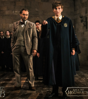 fantastic beasts, albus dumbledore and the crimes of grindelwald