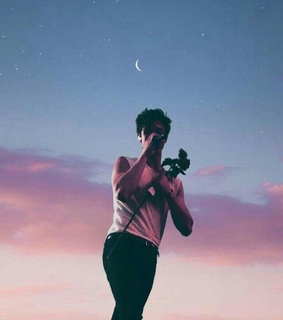 rose, singer and shawn mendes