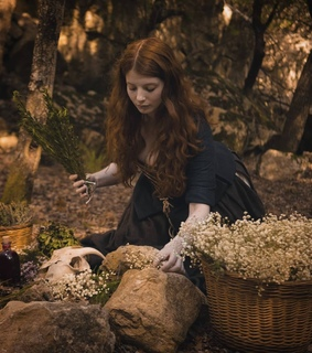 photography, lizzie siddal and herbalism
