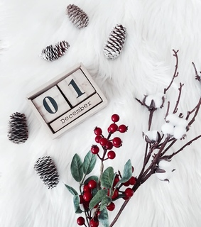 december, holly and decor