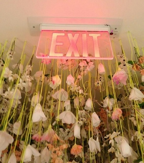 flowers, green and exit
