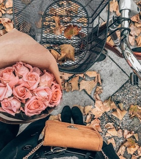 fall fashion, beautiful bouquet and pink roses